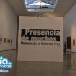 Museo de Bellas Artes 3