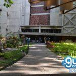 Museo de Bellas Artes 4