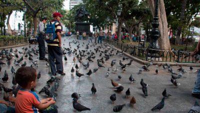 Fuente: www.elestimulo.com